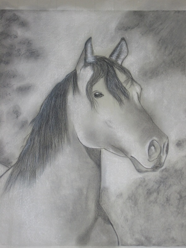 Pin disegni cavalli matita colorare imagixs ajilbabcom for Cavallo disegno a matita