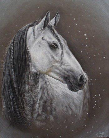 Il Cavallo :: Leggi il Topic - quadri tema equestre